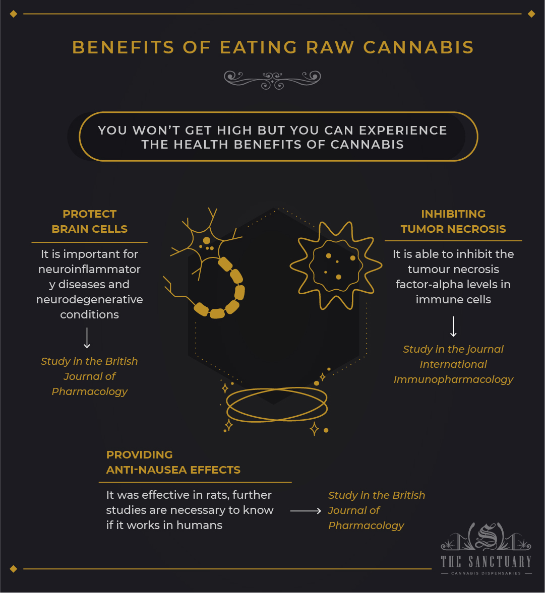 What Happens if You Eat Raw Weed