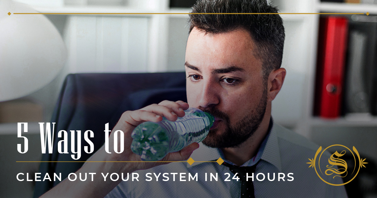 ways to clean out your system in 24 hours