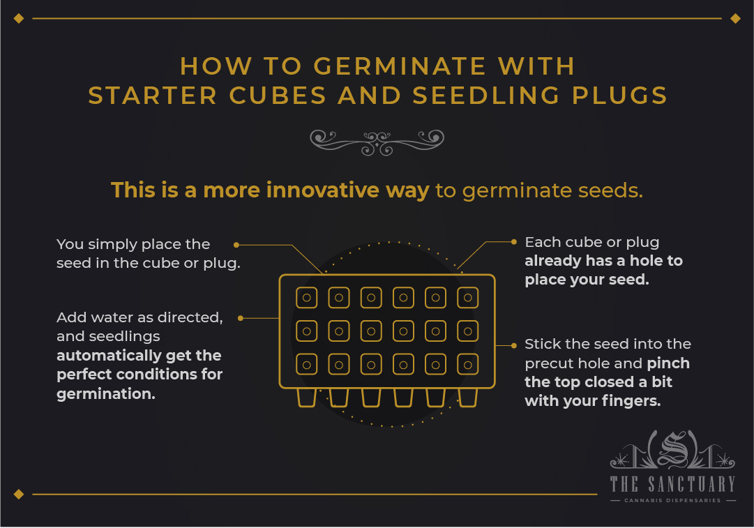 How to germinate with starter cubes and seedling plugs
