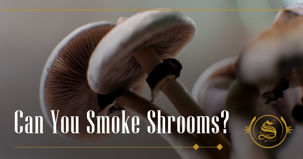 Can You Smoke Shrooms?