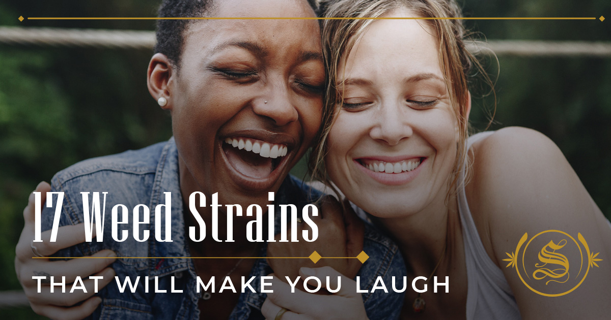 Weed Strains That Will Make You Laugh