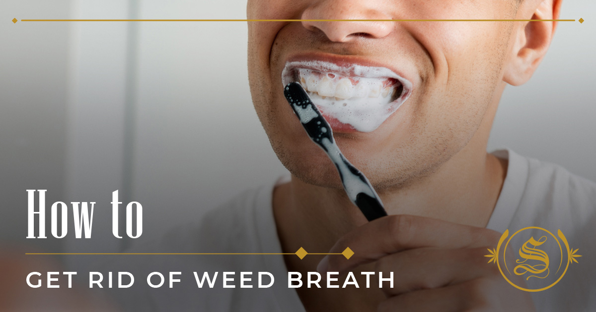 How to Get Rid Of Weed Breath